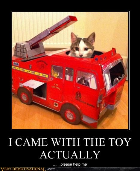 cat toy actually fire engine - 4417197824