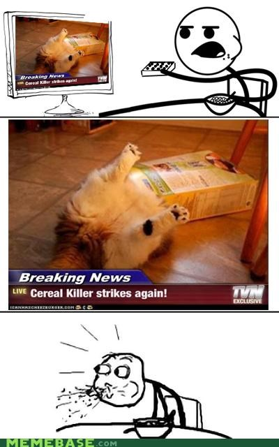 cereal guy,cereal killer,kitteh,Rage Comics