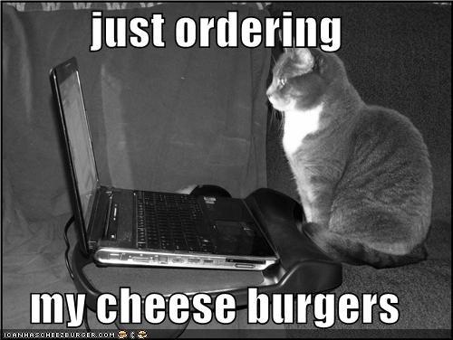 Cheezburger Image 4417964288