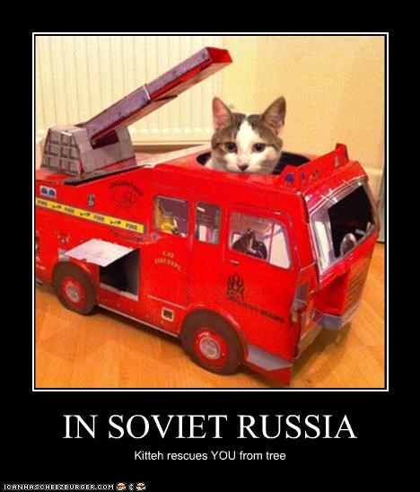 IN SOVIET RUSSIA Kitteh rescues YOU from tree