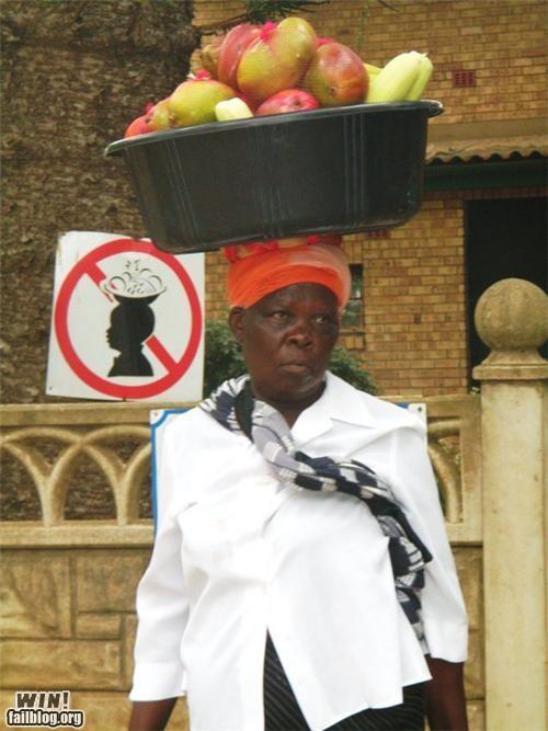 africa balance disobedience fruit signs warning - 4418582528