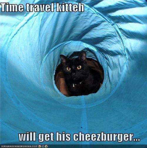 Cheezburger Image 4418610432