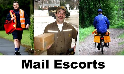 couriers escort escorts fedex homophone innuendo insinuation mail male slogan