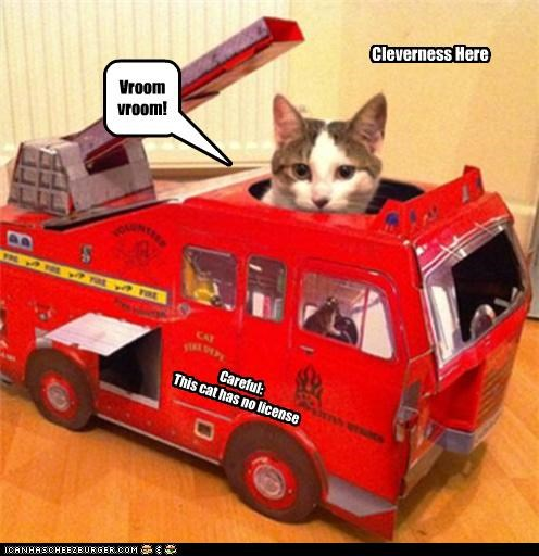 Careful: This cat has no license Cleverness Here Vroom vroom!