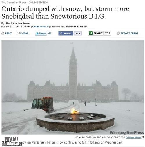 clever,completely relevant news,headline,snow,winter