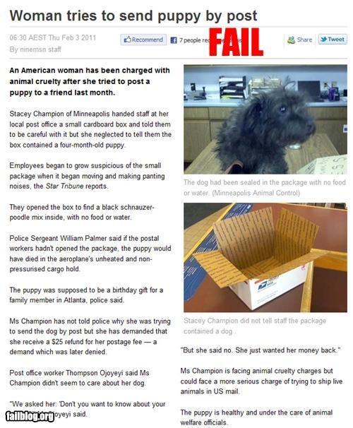 animals dogs failboat g rated isuues mail pets Probably bad News - 4419668480