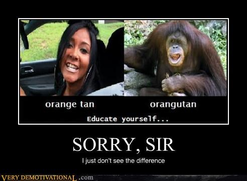 difference orange orangutan Snookie sorry tan