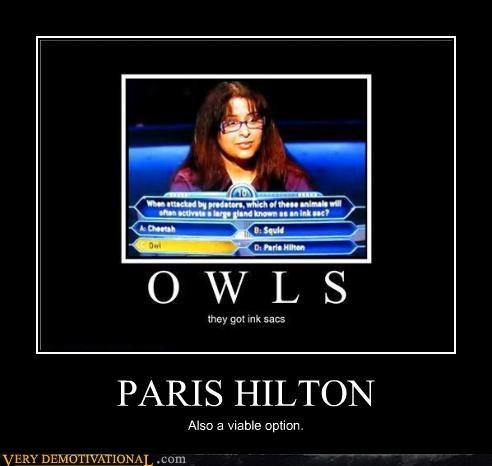 game show ink sacs millionaire Owl paris hilton - 4419879424