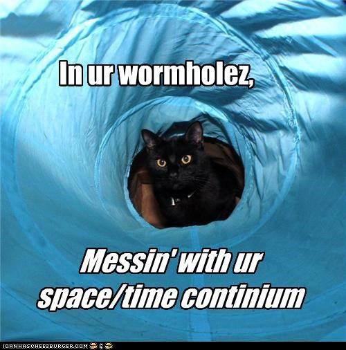 caption captioned cat continuum Hall of Fame im-in-your messing messing with space time tube wormhole - 4420348160