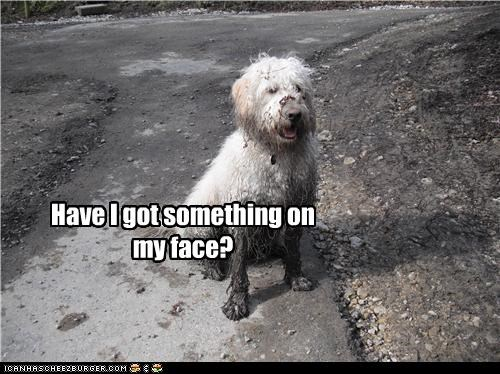 Have I got something on my face?