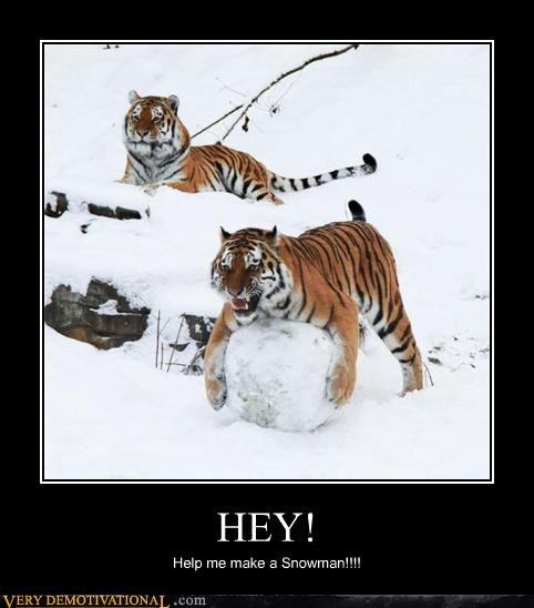 snow,tiger,snowman