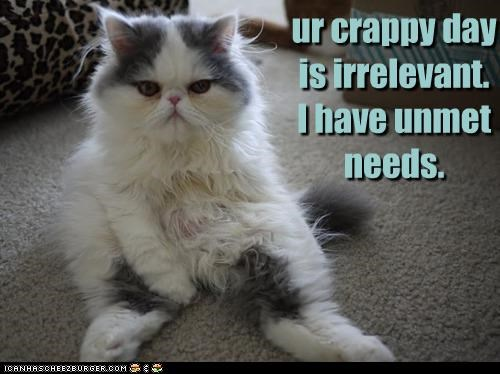 ur crappy day is irrelevant. I have unmet needs.