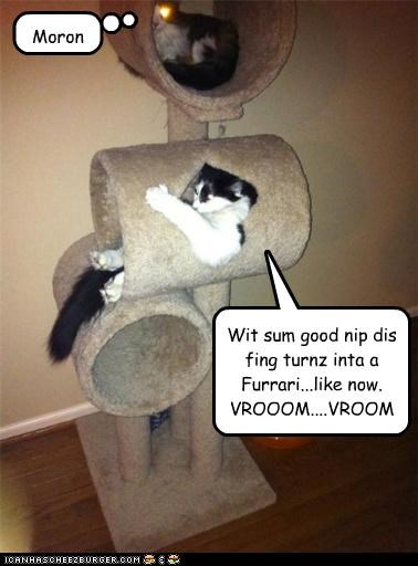 Wit sum good nip dis fing turnz inta a Furrari...like now. VROOOM....VROOM Moron