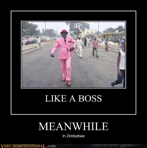 zimbabwe,awesome,Meanwhile,suit