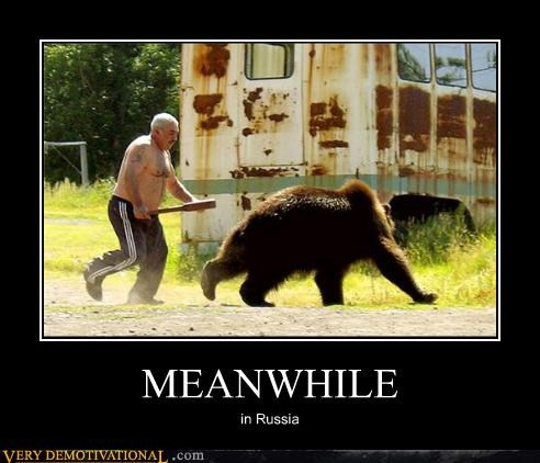 russia,bear,Meanwhile