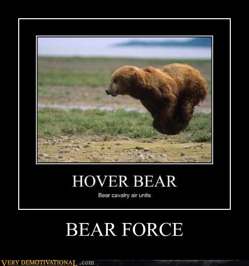puns hover bear air force - 4422143744