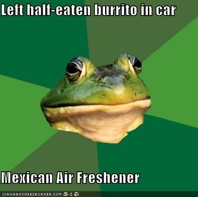 air freshener,burrito,car,foul bachelor frog,mexico