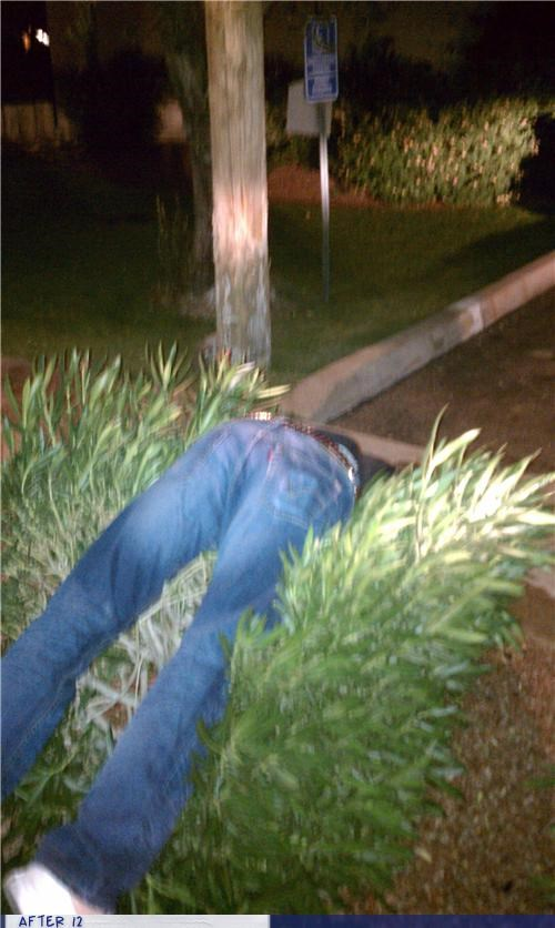 bush,outside,passed out,uncomfortable