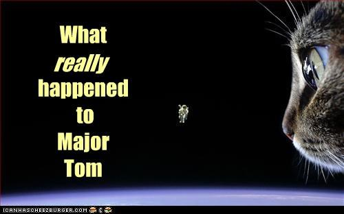 actual astronaut caption captioned cat event fact happened major tom noms really space what - 4424377856