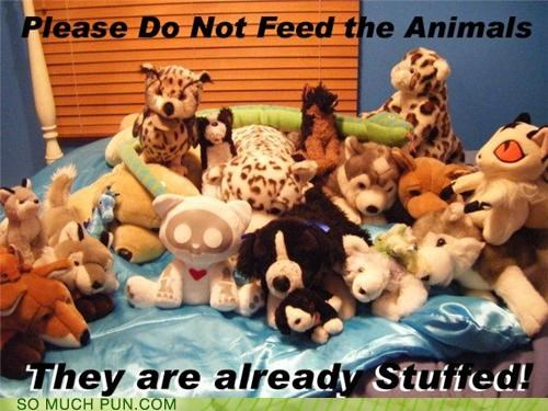 animals,do not,double meaning,feed,full,literalism,please,request,stuffed,stuffed animal,stuffed animals
