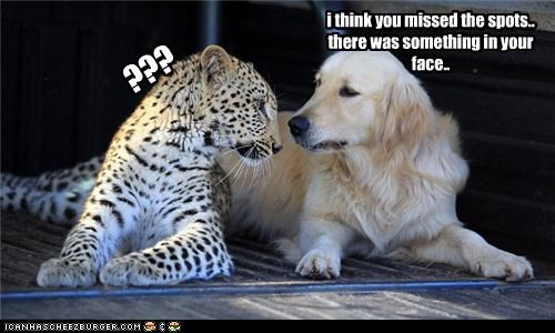 i think you missed the spots.. there was something in your face.. ???