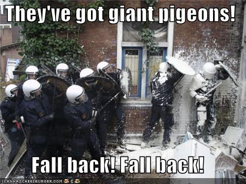 giant messy paint pigeons police poop swat