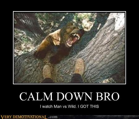 bear,bro,calm down,man vs wild