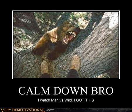 bear bro calm down man vs wild