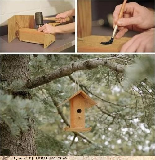 birdhouse birds IRL paint - 4426527744