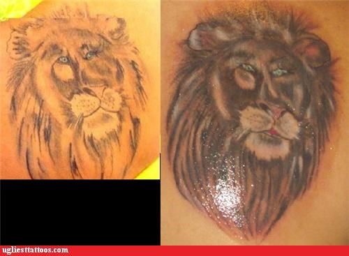 lions,tattoos,funny