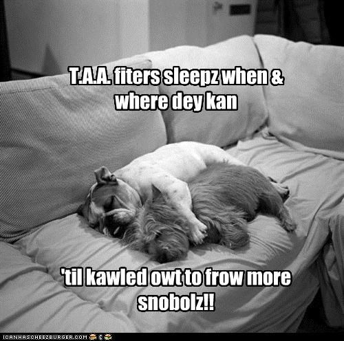 T.A.A. fiters sleepz when & where dey kan 'til kawled owt to frow more snobolz!!