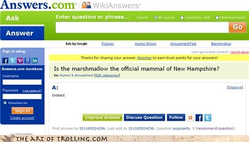 answers,indeed,mammal,marshmallow,new hampshire,Yahoo Answer Fails