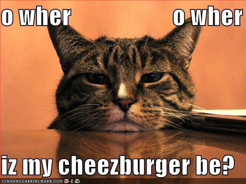 Cheezburger Image 442790656