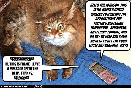 Cheezburger Image 4428769536