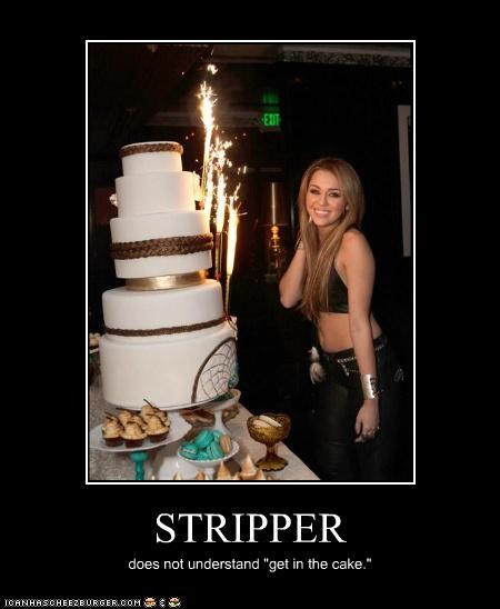"""STRIPPER does not understand """"get in the cake."""""""