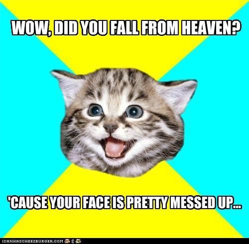 Happy Kitten heaven messed up ugly your face