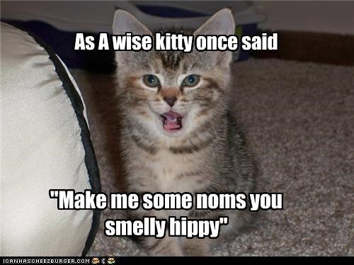 caption captioned cat Command hippy impatient kitten noms order quote said smelly wisdom wise - 4431017728