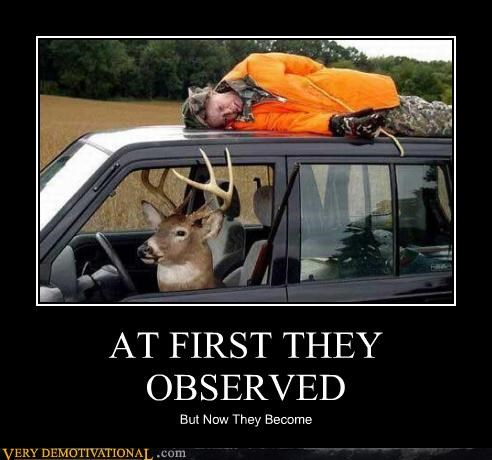 observed deer hunter