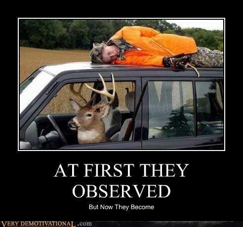 observed deer hunter - 4431181568