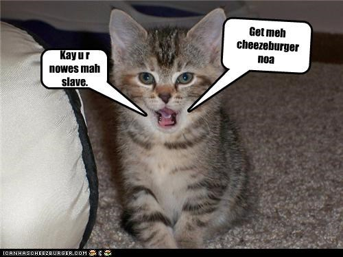 Cheezburger Image 4431507968