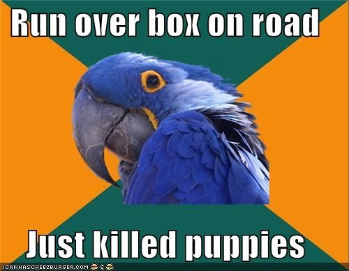 box car Paranoid Parrot puppies road - 4431563264