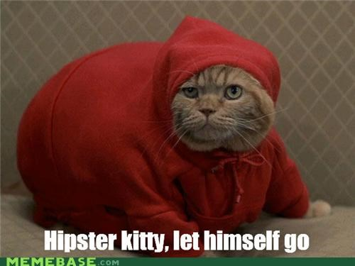 college fat freshman 15 Hipster Kitty still cooler than you - 4432622848