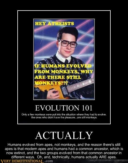 creationism apes argument actually