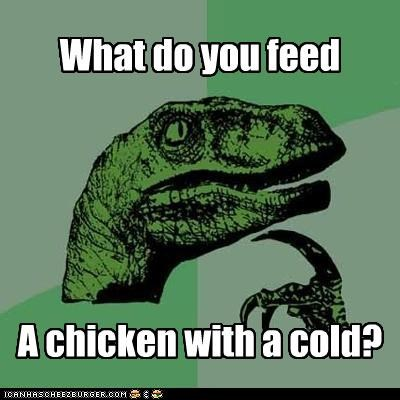 animemes,chicken,chicken soup,cold,philosoraptor