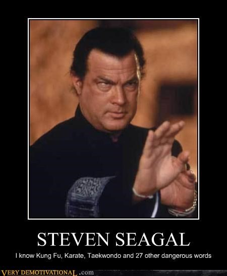 STEVEN SEAGAL I know Kung Fu, Karate, Taekwondo and 27 other dangerous words