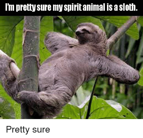 animals doing their thing that might be your spirit animal