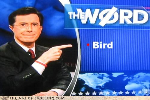 bird is the word family guy IRL Songs stephen colbert the word