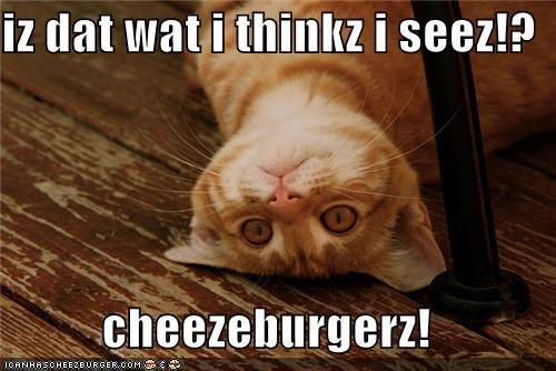 Cheezburger Image 4436630016