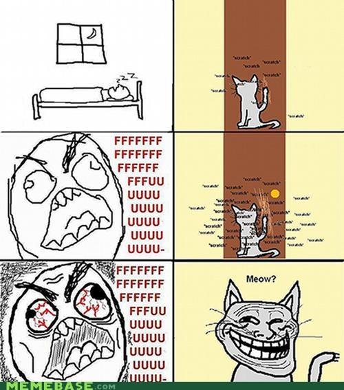 animemes cat door scratch sleeping troll troll face - 4437287680