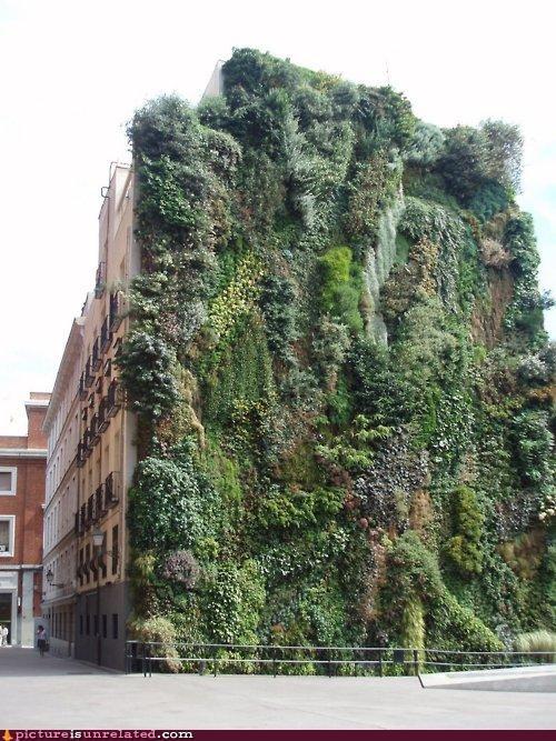 art buildings modern living plants wtf - 4437585408